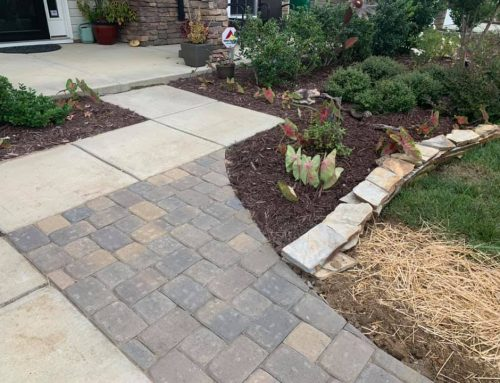 French Drains – Outdoor Living Tip of the Day