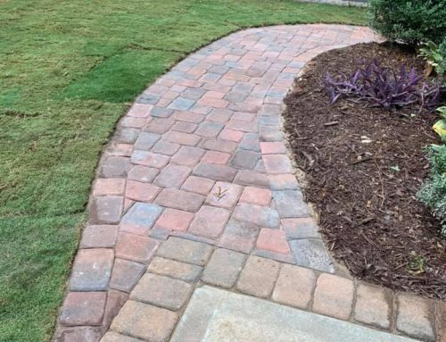 Paver Pathway – Outdoor Living Tip of the Day