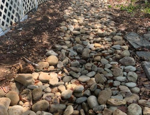 Drainage – Outdoor Living Tip of the Day