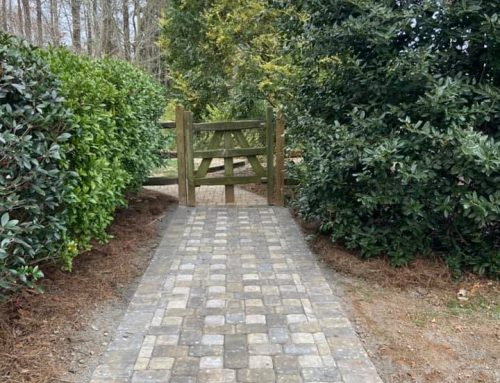 Pavestone Paver Pathway – Outdoor Living Tip of the Day