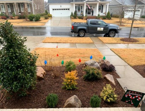 Curb Appeal – Outdoor Living Tip of the Day