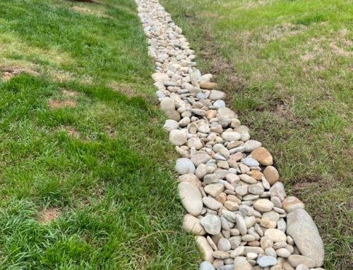 Dry Creek Bed – Outdoor Living Tip of the Day