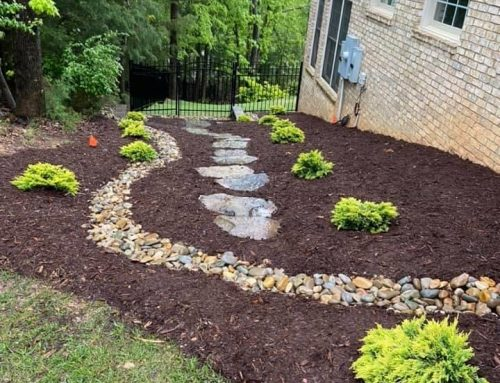 Pathways with Dryscape – Outdoor Living Tip of the Day