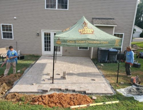 Paver Patio, Plantings and More