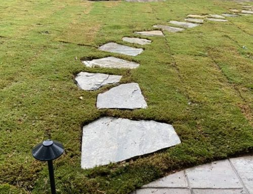 Stone Pathway – Outdoor Living Tip of the Day